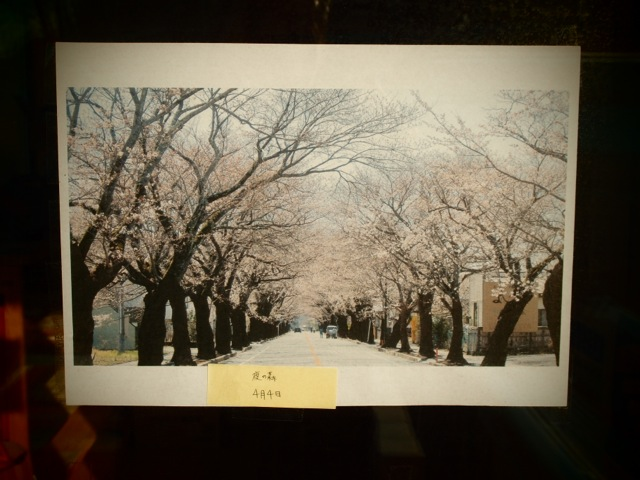 春が近い福島
