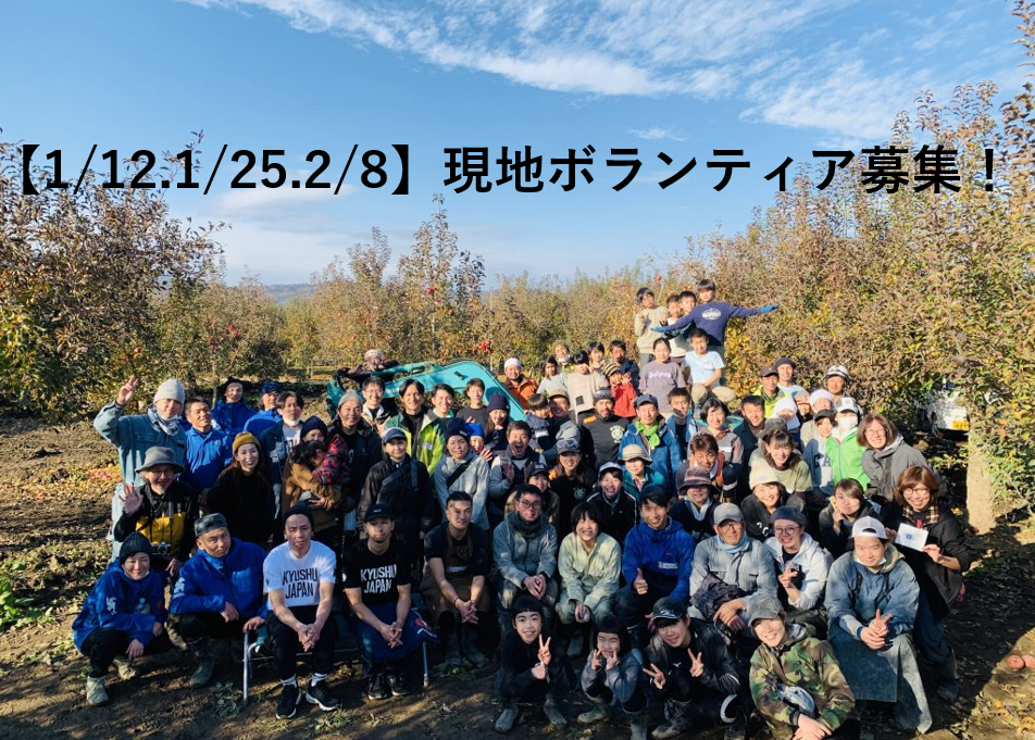 【1/12.1/25.2/8】ボランティアスタッフ募集 長野千曲川周辺リンゴ畑支援(リンゴスタープロジェクト)