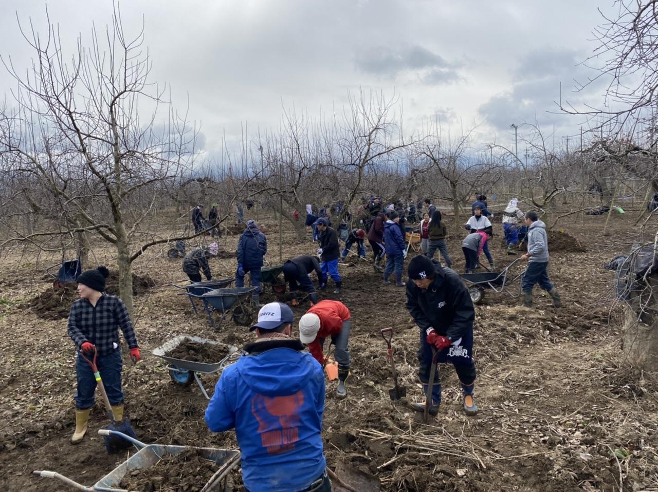 【台風19号支援】2/29(土)長野のリンゴ畑の物置小屋修理をしてくれる大工ボランティア募集